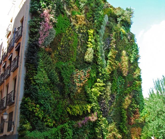 Plantas verticales great ecosistema vertical en ecuador u for Jardines verticales quito ecuador