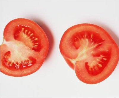 semilla-de-tomate