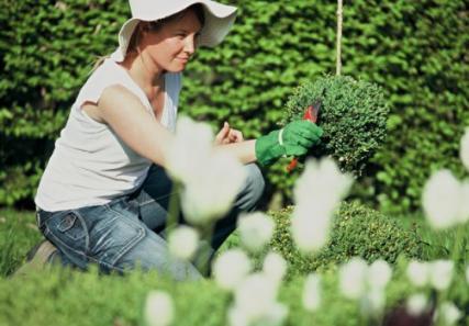 tareas-de-jardin-de-verano