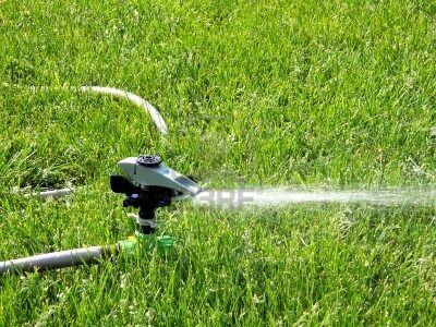 934070-de-rociadores-de-agua-verde-c-sped-en-verano