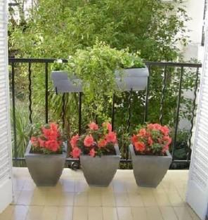 Algunos consejos para que cuides adecuadamente las plantas - Macetas para balcones ...