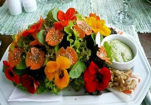 florescomestibles_thumb