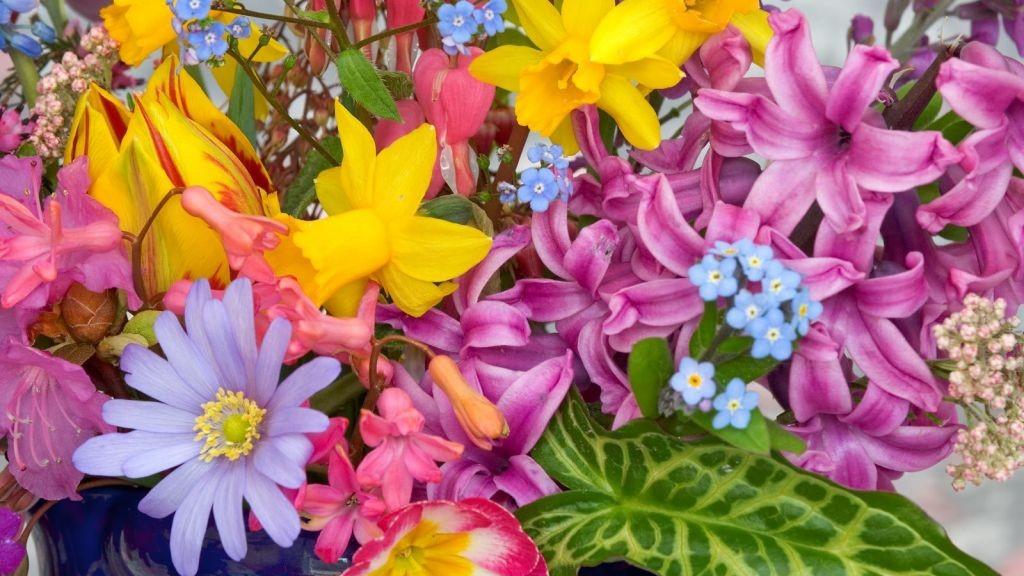 Flores-en-Primavera-334097_1024