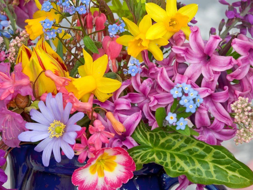 Consejos que no puedes pasar por alto para tus plantas en primavera