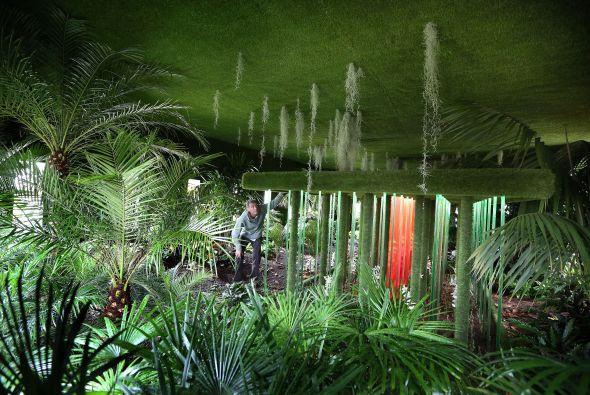Dise o de jardines cuidado de plantas - Cuidado de jardines ...