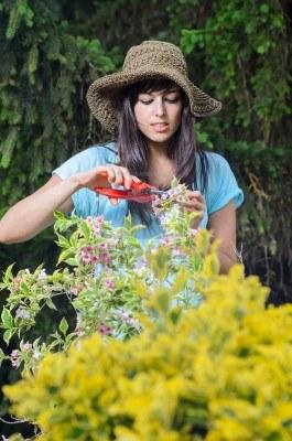 14274476-joven-mujer-de-jardineria-y-el-cuidado-de-las-plantas-en-verano