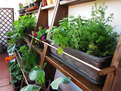 jardinesverticales2