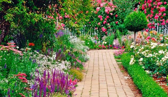 Cuidados-del-jardin-en-julio